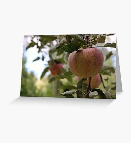 Ripen To Perfection  Greeting Card