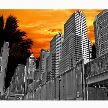 City of Paradise Palms by hallowedguide