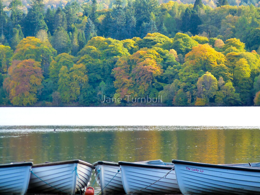 Autumn Loch Faskally  by Jane Turnbull