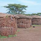 Maasai Village, Northern Tanzania by Adrian Paul