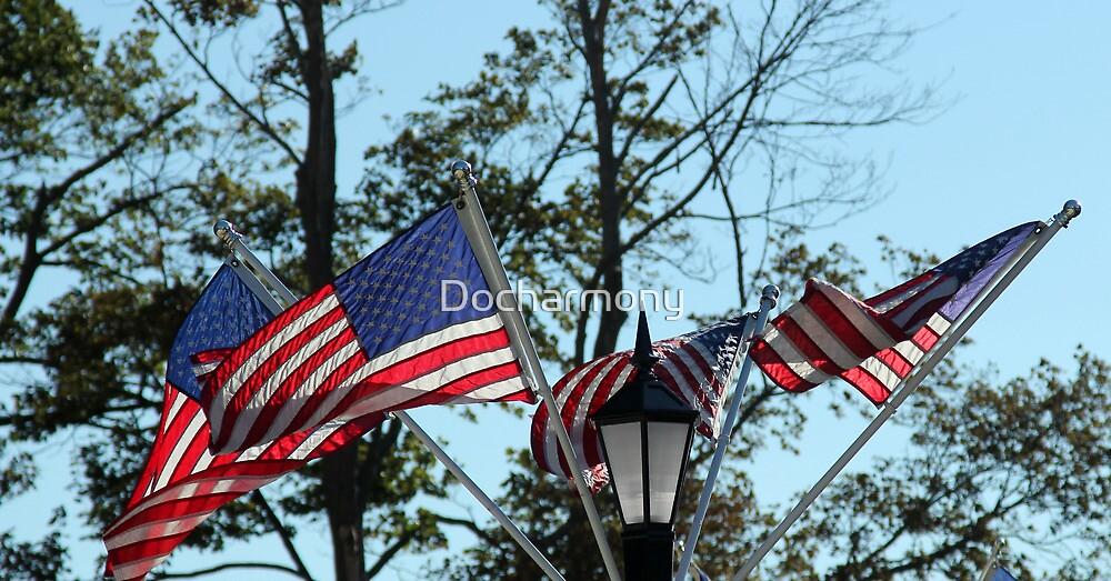 American Flag - Old Glory by Docharmony