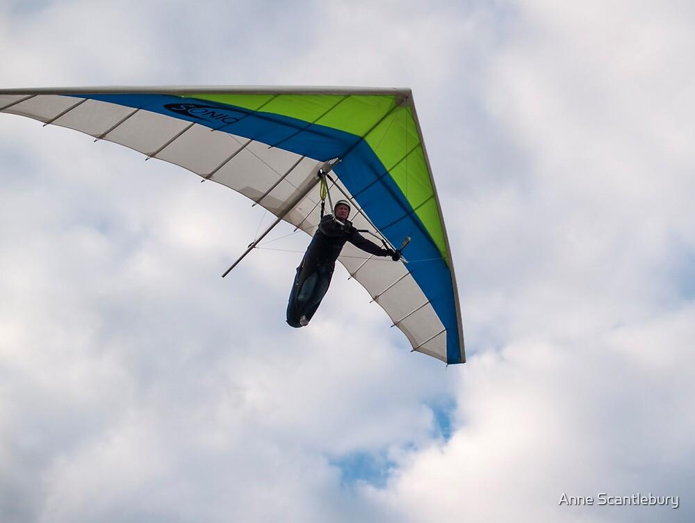 hang glider by Anne Scantlebury
