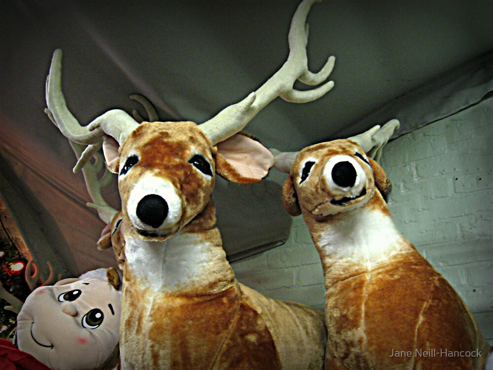Reindeer Waiting For Christmas Eve by Jane Neill-Hancock