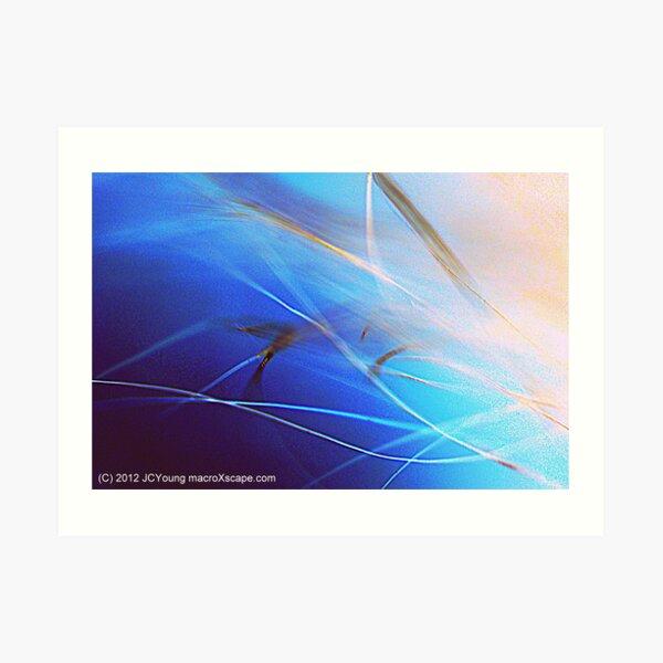 Floating in Blue Art Print