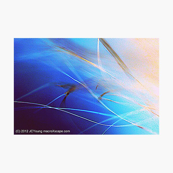 Floating in Blue Photographic Print