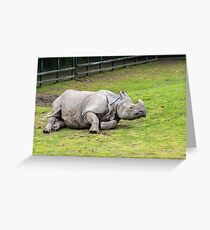 Greater One-horned Rhino Greeting Card