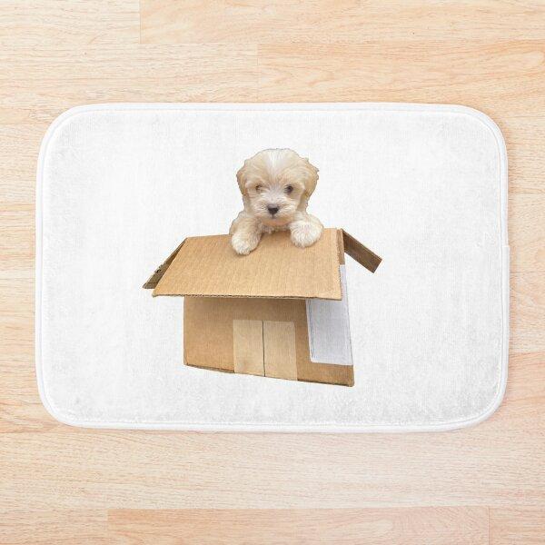 Cute Maltipoo Puppy in a Box Bath Mat
