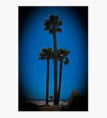 Coronado Giants Photographic Print