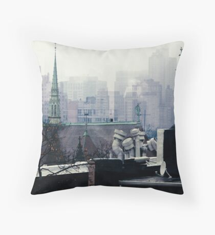 Roof Access Throw Pillow