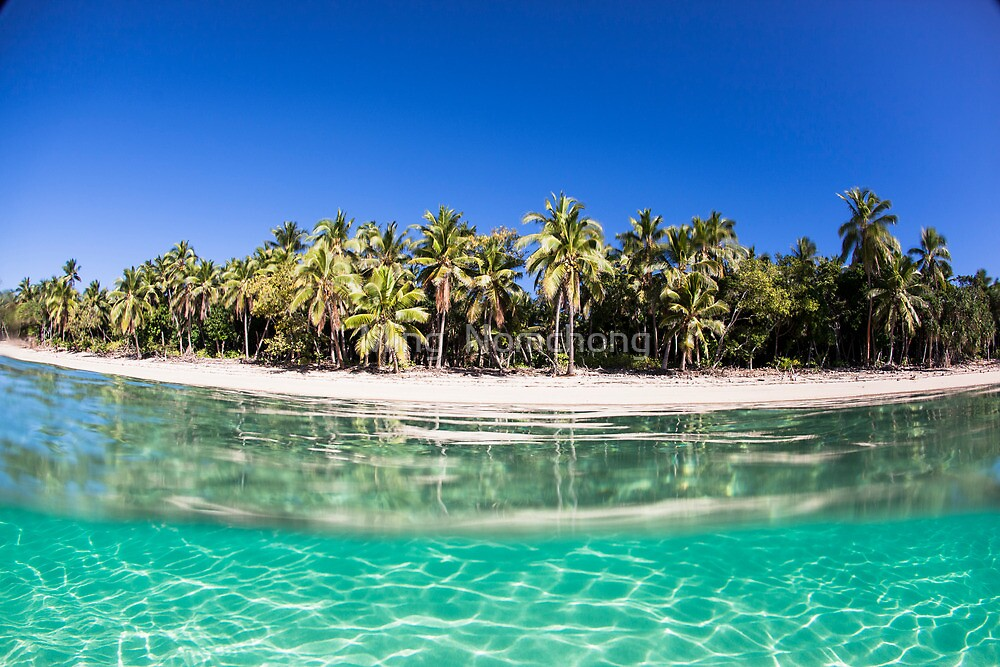 Under Over Tonga by Ming  Nomchong