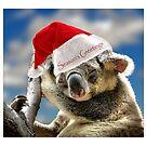 season's greetings by carol brandt