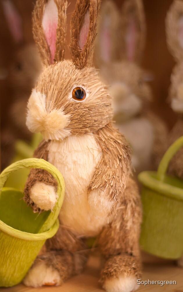 Rabbit by Sophersgreen