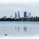 Perth City by Eve Parry