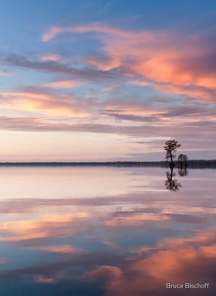 Looking north by Bruce Bischoff
