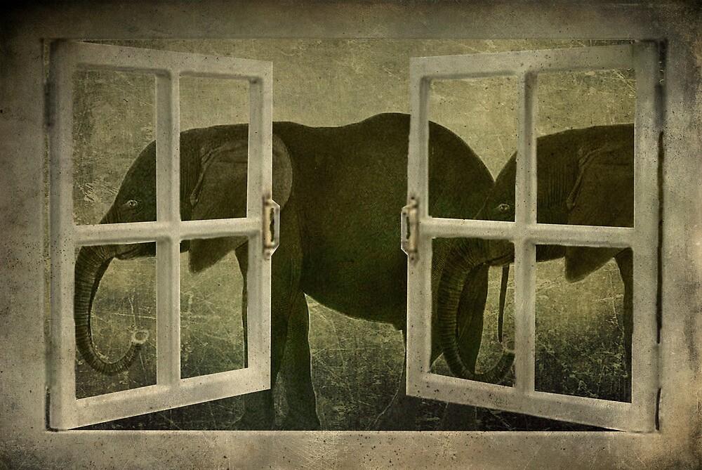 I See Elephants by garts