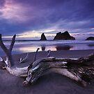 Sunset at Wharariki Beach - New Zealand by Mark Shean