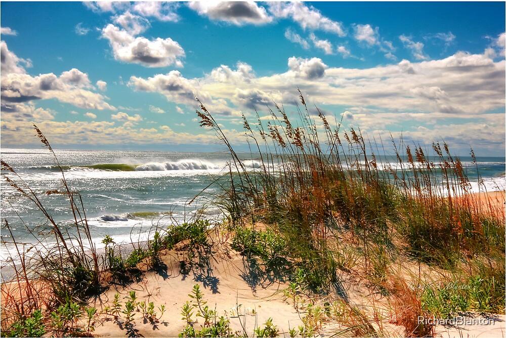 FALL DAY AT THE BEACH by RichardBlanton