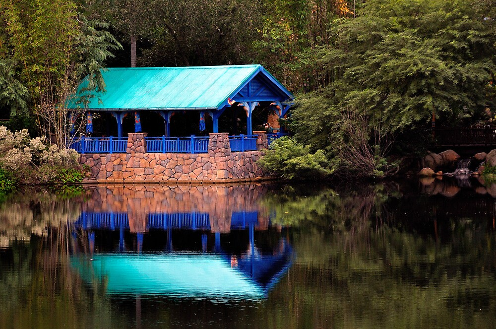Animal Kingdom, Disney World, Orlando, Florida by fauselr