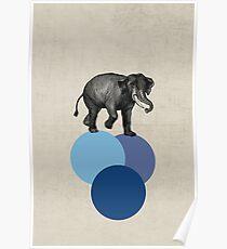 elephant balance Poster