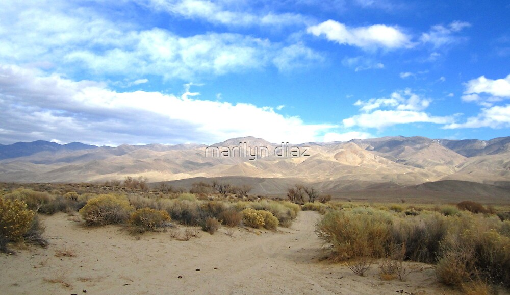 Desertscape 2 by marilyn diaz