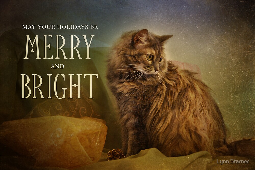 Merry & Bright by Lynn Starner
