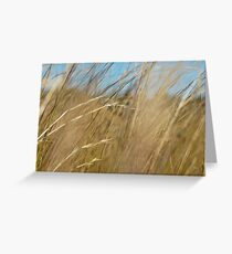 Long Grass 2 Greeting Card