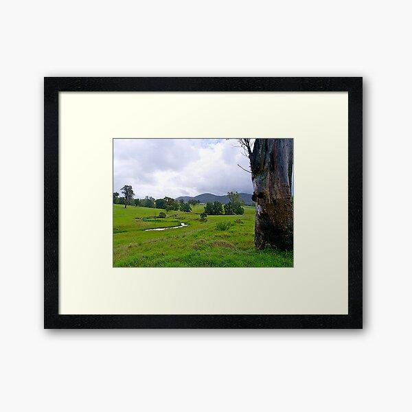 Australian countryside, Bega, NSW. Framed Art Print