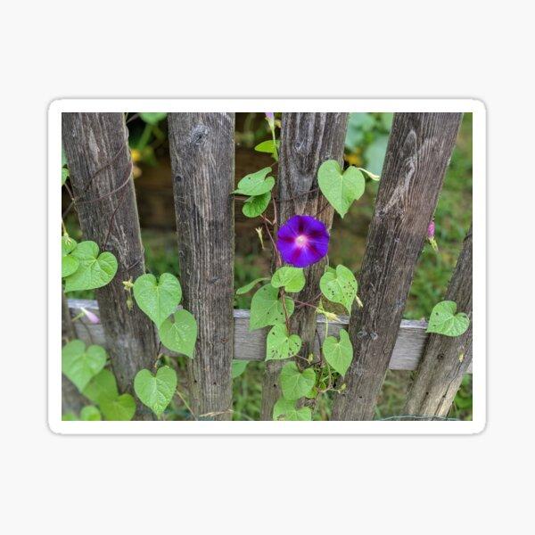Lone Flower Sticker