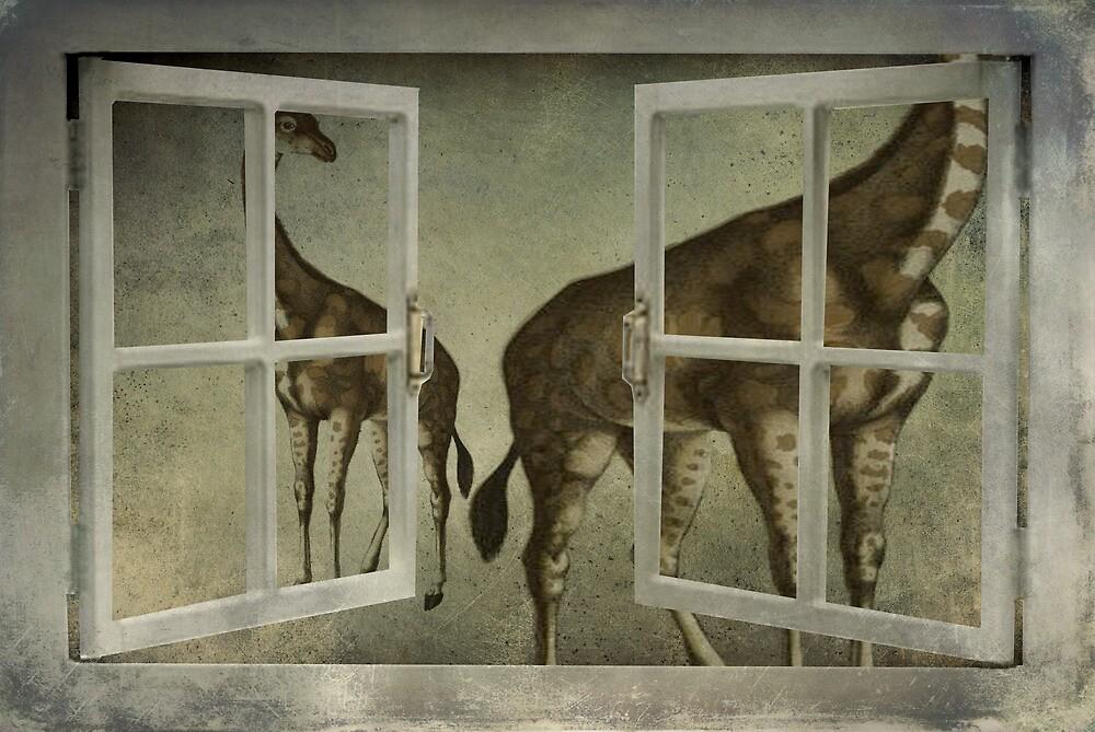 I See Giraffes by garts