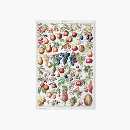 Adolphe Millot - Fruits pour tous - French vintage poster Art Board Print
