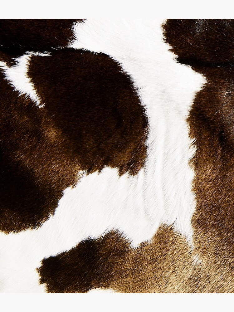 Modern Cowhide by cadinera