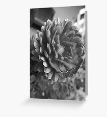 Flora GreyScale Greeting Card