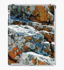 Colouful Rocks at Rocky Cape National Park, Tasmania, Australia. iPad Case/Skin