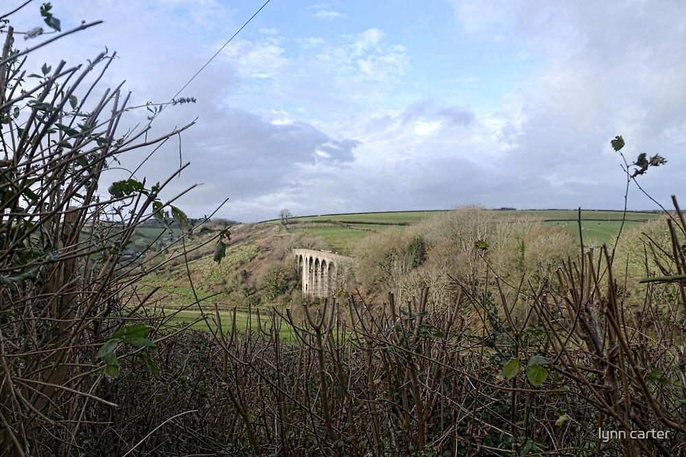 Painted Sky - Uplyme Devon. UK by lynn carter