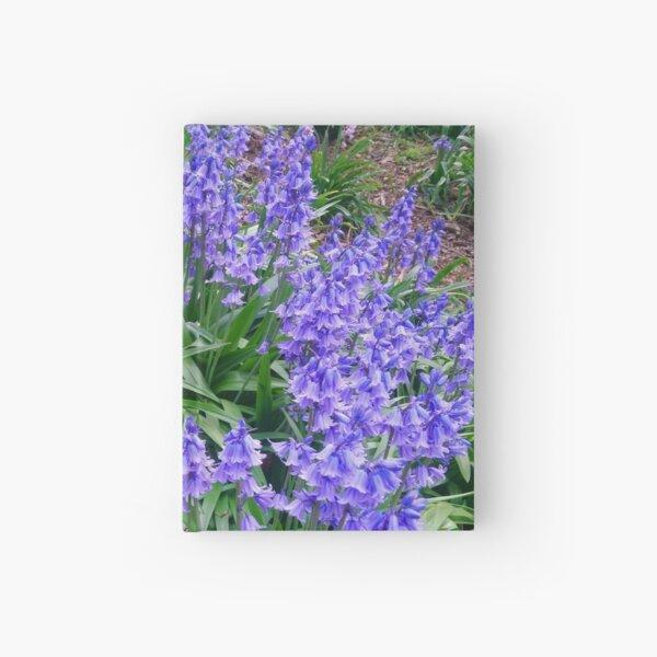 Bluebells #5 Hardcover Journal
