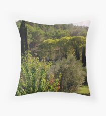 A view of the Chateau Delarain Throw Pillow