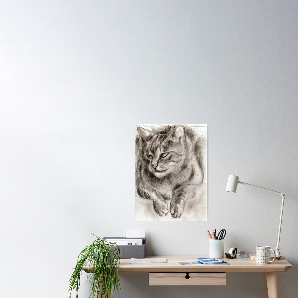 Cat Drawing Poster