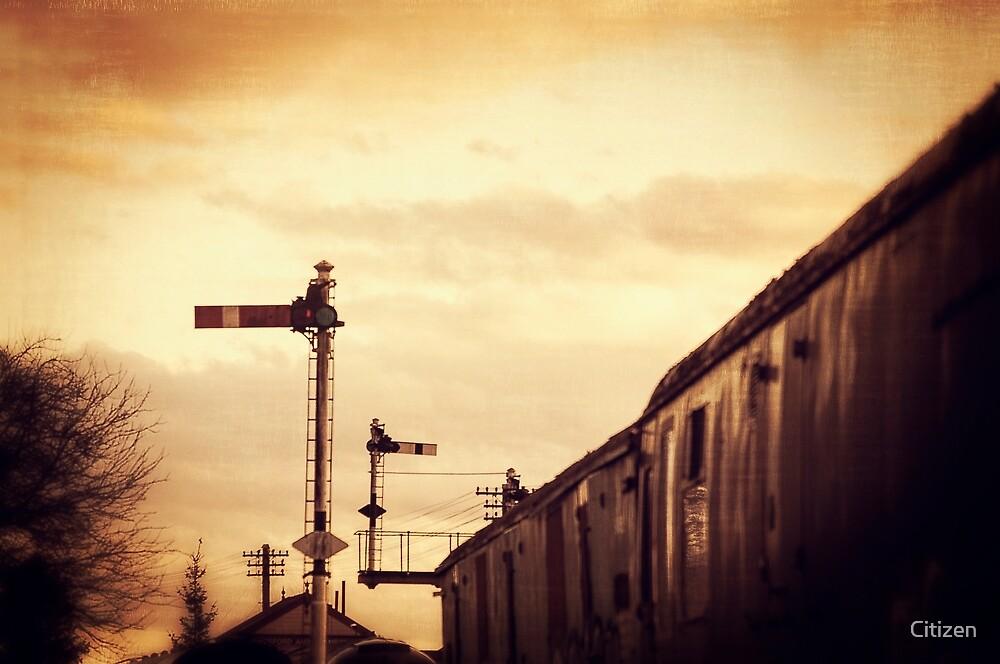 Signals by Nikki Brown