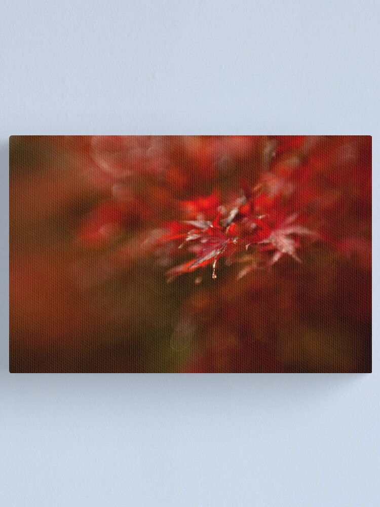 Alternate view of Maple Canvas Print