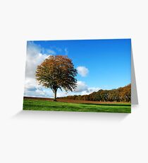 Going it alone Greeting Card