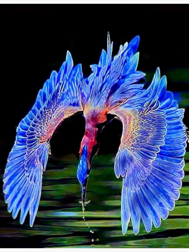 Diving Bird by michaeltodd