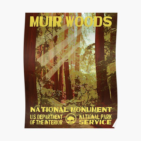 Muir Woods National Monument Park Poster Poster
