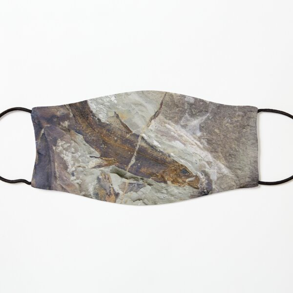 Fish Fossil by Avril Thomas Kids Mask