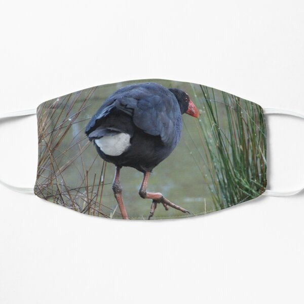 Moorhen by Avril Thomas Mask