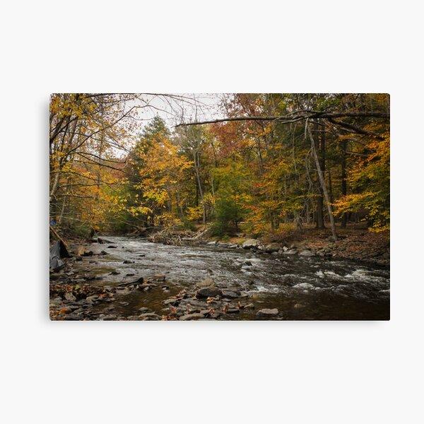 Bushkill River Scene Canvas Print