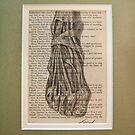 anatomical fooot  by JordanBlumer