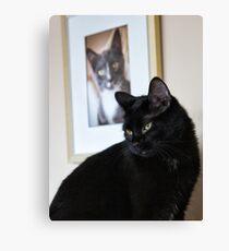 Cat Picture Canvas Print