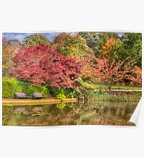 Secret Garden - Mount Wilson  # 8 , NSW Australia - The HDR Experience Poster