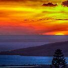 Maui Sunset  - 11/17/12 by NealStudios