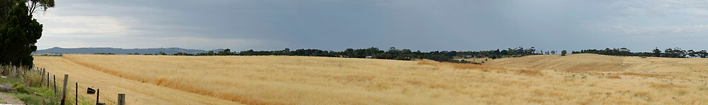 Playford Hills, South Australia by Rebecca Hansen